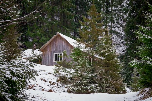 Maison en forêt d'hiver