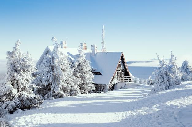 Maison d'hiver avec forêt de neige