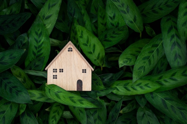 Maison modèle sur fond de feuilles vertes construction et investissement immobilier concept de maison écologique