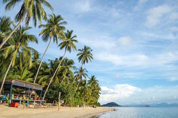 Maison sur la plage près de palmiers avec vue sur la plage de sable