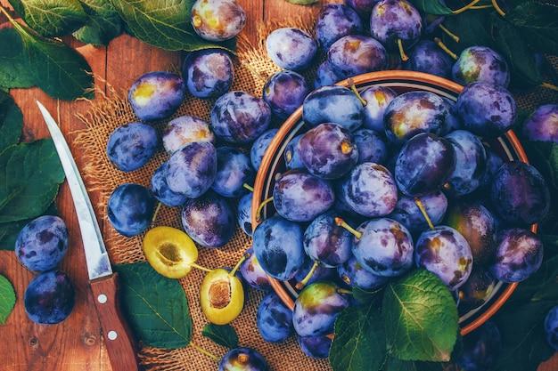 Maison de prunes mûres pour faire de la confiture. la nature.
