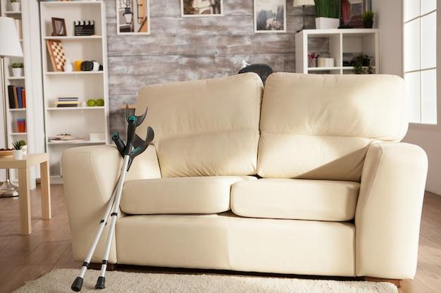 Maison de retraite avec canapé confortable au centre de la pièce. installation moderne.