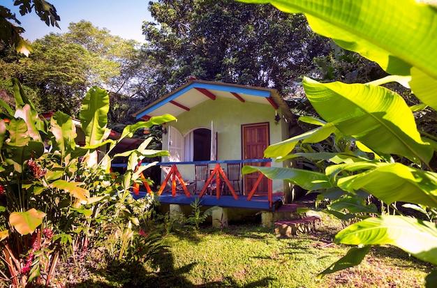 Maison traditionnelle du brésil à la jungle. palmiers dans le jardin, brésil