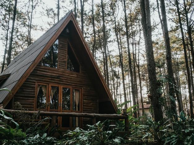Maison de vacances dans la pinède