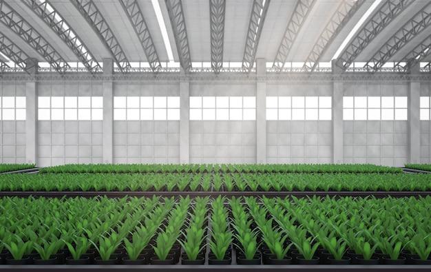 Maison verte de rendu 3d ou serre pleine de plantes