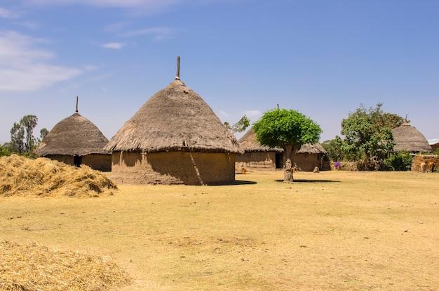 Maison de village traditionnelle en ethiopie afrique ethiopie