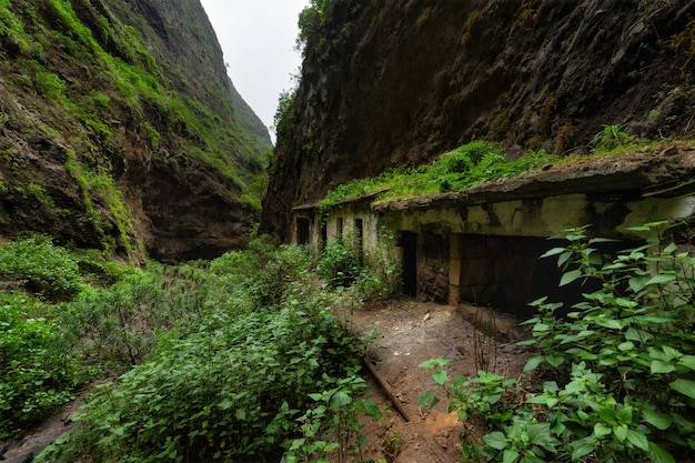 Maisons abandonnées dans la forêt tropicale canyon de badajoz barranco de badajoz tenerife