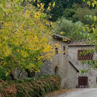 Maisons au milieu des arbres dans le village, badiaccia a montemuro, radda in chianti, toscane, italie