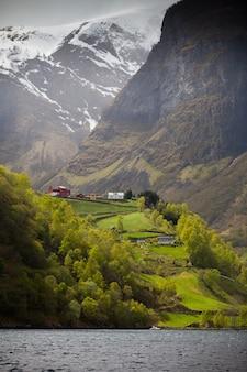 Maisons sur une falaise abrupte d'un fjord norvégien
