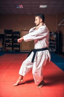 Maître des arts martiaux sur l'entraînement au combat dans le gymnase