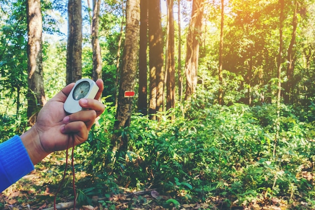 Mâle main tenant la boussole en forêt