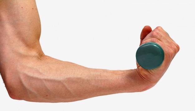 Mâle main tenant un haltère vert isolé sur fond blanc. concept minimaliste.