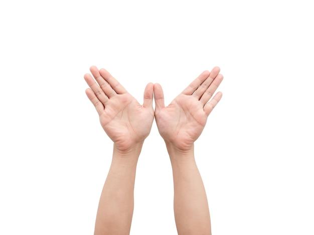 Mâle mains geste ailes blanc isolé