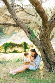 Maman est assise avec son petit fils à genoux sur l'herbe sous l'arbre dans une oliveraie et joue