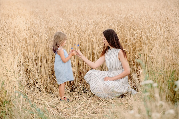 Maman tend une fleur de bleuet à sa fille dans un champ de blé en biélorussie