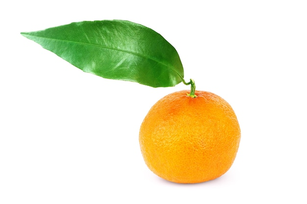 Mandarine Avec Une Feuille Sur Fond Blanc Photo Premium