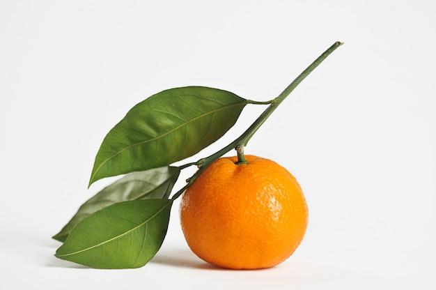 Mandarine avec des feuilles