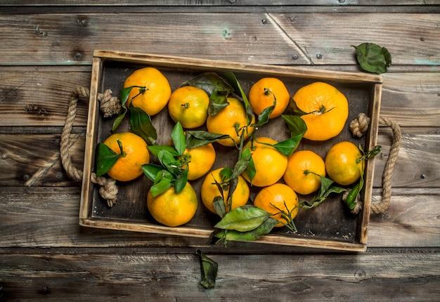 Mandarines fraîches avec des feuilles sur un plateau. sur table en bois