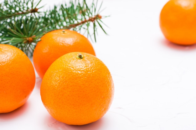 Mandarines mûres et branches de sapin sur une table blanche