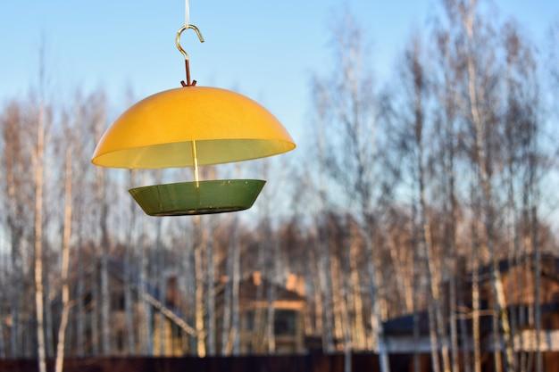 Mangeoire à oiseaux dans les bois