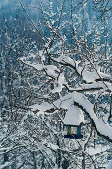 Mangeoire à oiseaux enneigée sur un arbre. beau paysage rural d'hiver