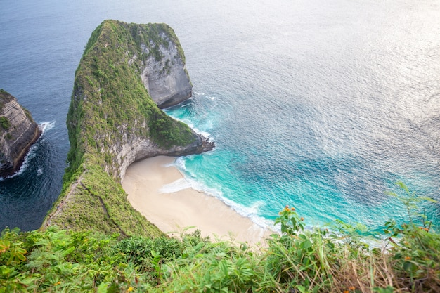 Manta bay ou kelingking beach sur l'île de nusa penida, bali, indonésie