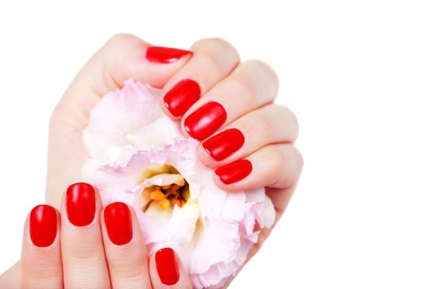 Manucure rouge avec fleur bouchent, isolé sur mur blanc