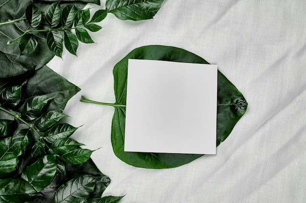 Maquette de carte vierge blanche sur fond textile avec des feuilles vertes sur les côtés, pose à plat, espace pour le texte, vue de dessus, bannière de produit, concept de nature.