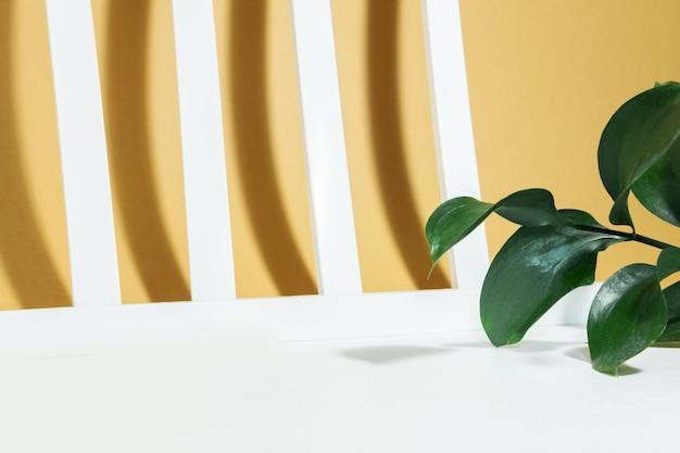 Maquette créative de feuilles de riskus et de lignes blanches géométriques avec des ombres dures sur un fond beige blanc dans les rayons du soleil. concept exotique minimal d'été ou d'automne