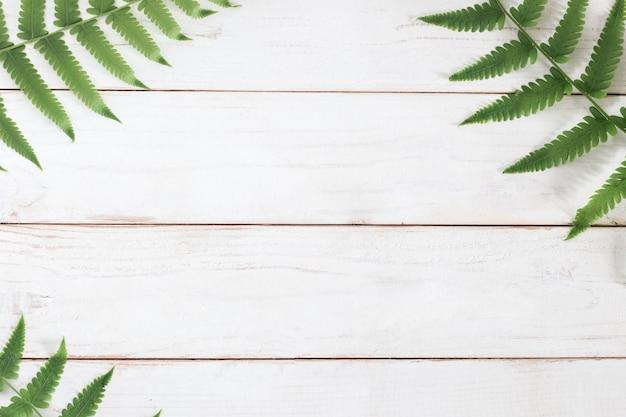 Maquette, feuille de fougère sur fond de planche de bois blanc, minimaliste