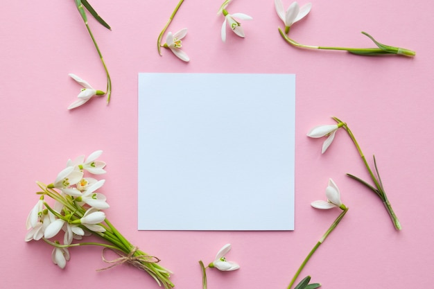 Maquette florale de délicates fleurs de perce-neige sur un fond rose clair avec du papier vide vierge