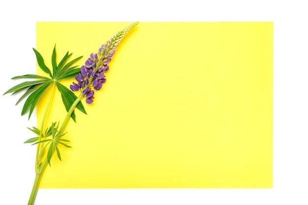 Maquette de note de carte de papier jaune vierge pour le texte avec un décor fait de fleur de lupin de couleur lilas bleu en pleine floraison sur fond blanc
