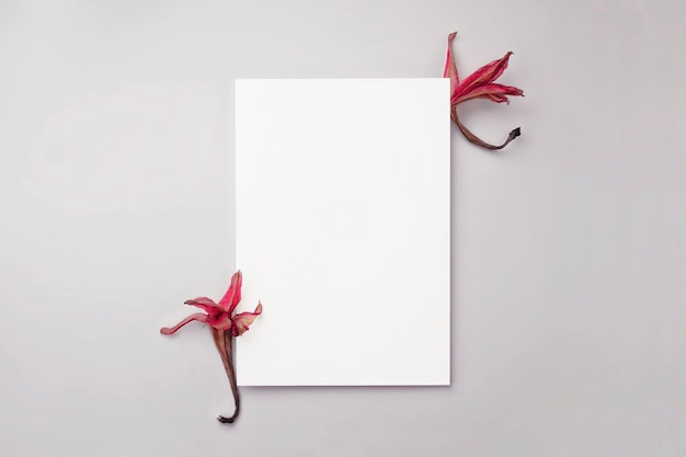Maquette de papeterie vierge avec des fleurs sèches roses