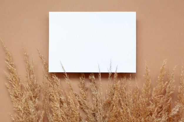 Maquette avec papier vierge vide et herbe de pampa séchée sur fond beige pastel.