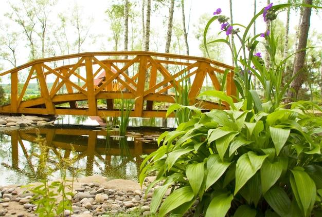 Marais d'eau douce avec pont
