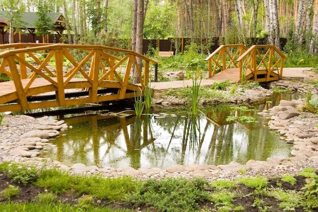 Marais d'eau douce avec ponts