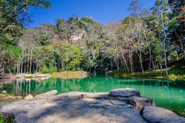 Marais de tham luang - parc forestier de khun nam nang non, chiang rai, au nord de la thaïlande