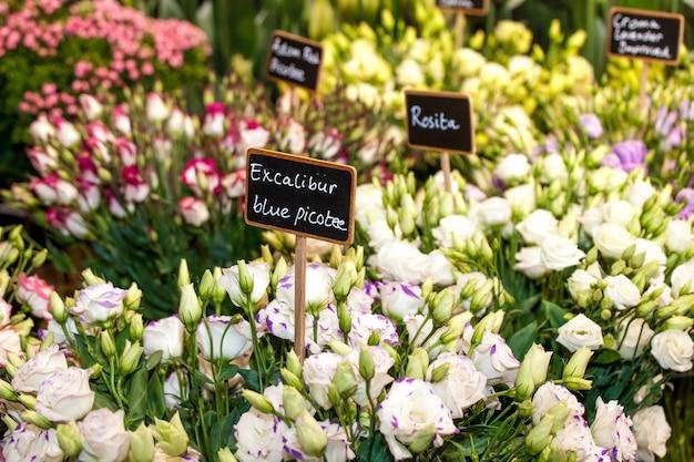 Marché aux fleurs dans la rue avec prix