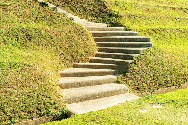 Marche d'escalier sur une colline en herbe