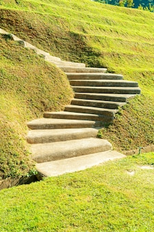 Marche d'escalier sur la colline d'herbe