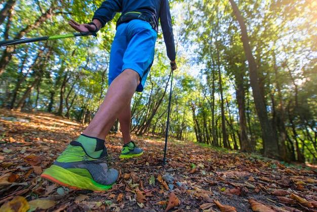 Marche nordique entre les feuilles des bois à l'automne