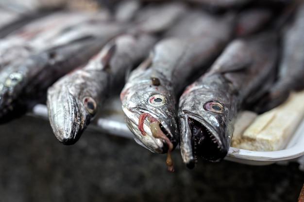 Marché traditionnel de poissons assortis