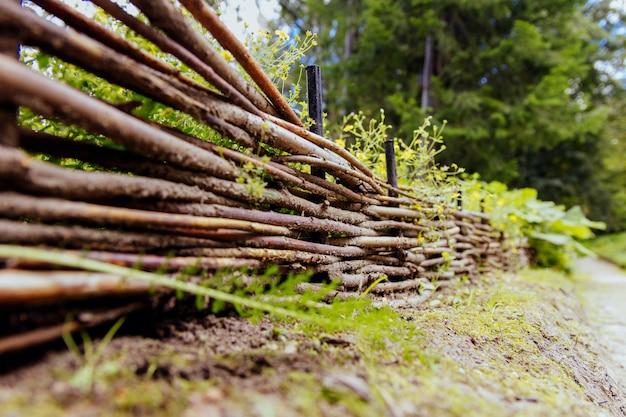 Marcher dans les bois