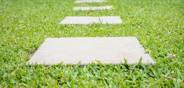 Marcher sur la pelouse