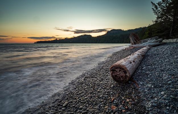 Marée haute sur la plage française, l'île de vancouver, colombie-britannique, canada