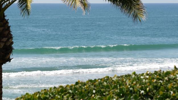 Marée de l'océan pacifique, vibrations de la station balnéaire tropicale de californie, états-unis. mousse de vagues de mer, feuille de palmier exotique verte par beau temps. ambiance de vacances d'été sur la côte, esthétique estivale. surface de l'eau bleue.