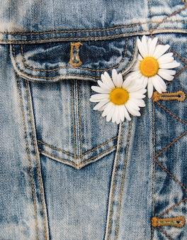 Marguerite dans la poche d'un jean
