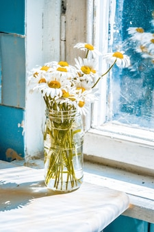 Marguerites dans un vase en verre sur la table près de la fenêtre