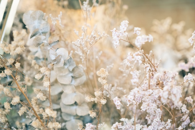 Mariage féminin avec eucalyptus sec, fleurs sauvages.