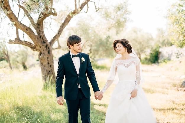 Mariée et marié marchant ensemble dans l'oliveraie, se regardant et se tenant la main
